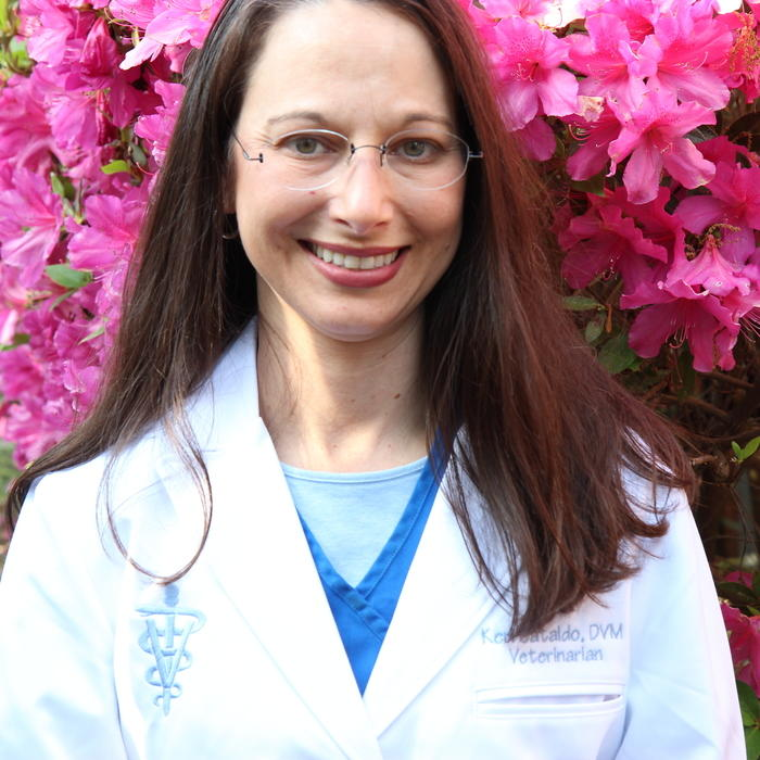 Dr. Keri Cataldo-Rogers </br> Veterinarian photo